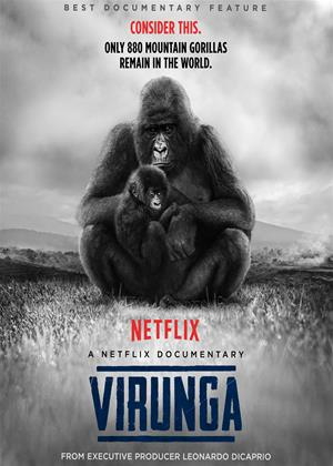 Le Parc National de Virunga (Congo) est :