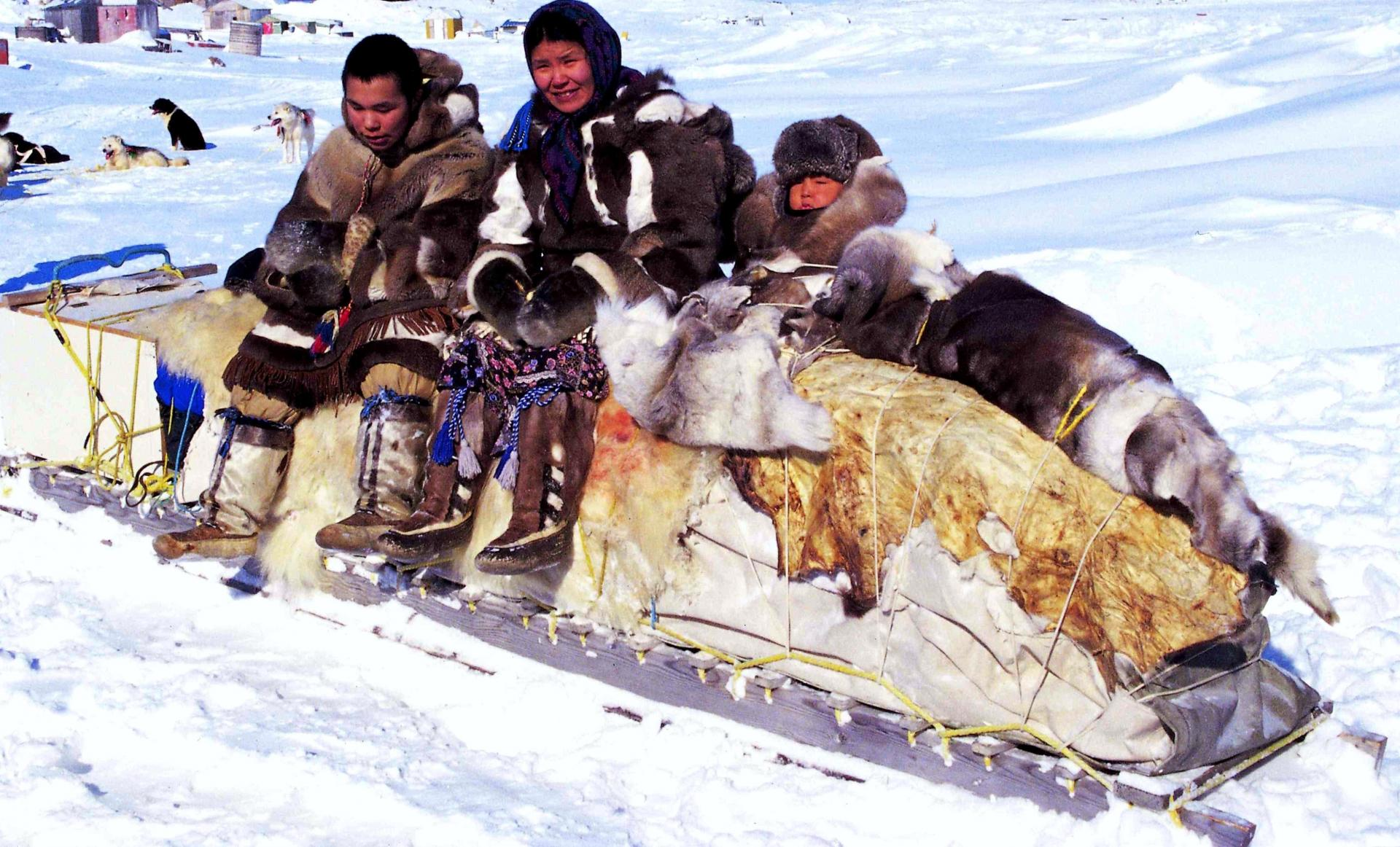 Inuits Canada Food Security Access To Food Poisoning